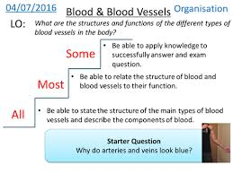 new aqa spec biology gcse blood components and vessels by zuba102