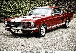 mustang vintage mustang car stock images royalty free images vectors