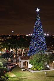 how many christmas lights per foot of tree delray beach 100 foot christmas tree lighting boca magazine