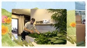 Interior Garden Services Interior Garden Plant Services U0026 Maintenance Orlando Fl Foliage