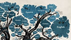 the tree of languages illustrated in one gorgeous infographic