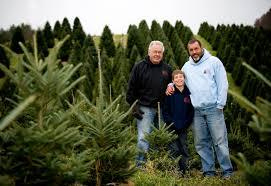 boyd mountain christmas tree farm christmas tree