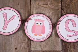 owl themed baby items baby shower decorations girl owl diabetesmang info