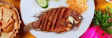 restaurants in cancun cancun
