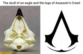 Assassins Creed Memes - the skull of an eagle logo of assassins creed comparison starecat com