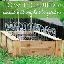 Making A Vegetable Garden Box by How To Build A Raised Bed Vegetable Garden Daily Mom