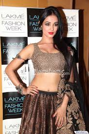 Sonal Chauhan Gallery Hd Picture 4 Glamsham Com