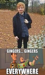 Funny Ginger Meme - lovely autumn leaves oh wait by me the focker meme center