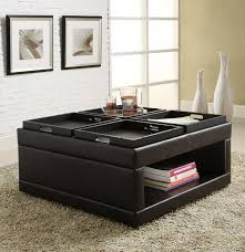 ottoman mesmerizing coffee table ottoman combo with storage