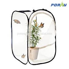 insect and butterfly habitat succulent mini greenhouse for