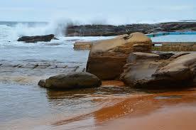 whale beach manly u0026 northern beaches australia