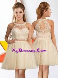 quinceanera damas dresses glorious chagne zipper quinceanera dama dress lace sleeveless