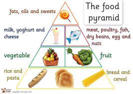 zoom english eso2 food pyramids