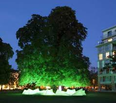 musical tree amplified sound from falling chestnuts urbanist