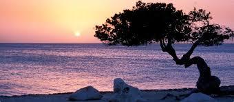 best black friday travel deals all inclusive 2017 jetblue aruba vacation packages u0026 deals jetblue vacations