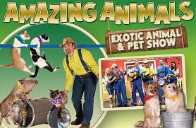Comedy Barn In Pigeon Forge Tennessee Amazing Animals Show Coupon 5 Off Pigeon Forge Tn