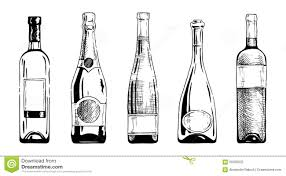 champagne bottle outline drawn bottle pencil and in color drawn bottle