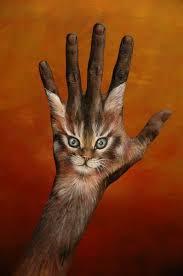 الرسم اليد images?q=tbn:ANd9GcT