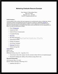 Resume For 1st Job by Resume For Job Seeker With No Experience Business Insider First
