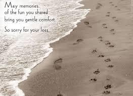 loss of dog loss of pet diy pet loss rainbow bridge and dog