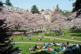 the best college in every state money u0027s best colleges 2016 money