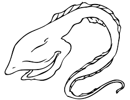 eel coloring pages getcoloringpages com