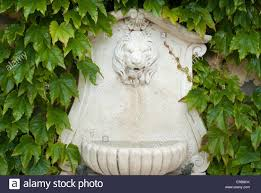 stone lion water fountain at a french country house stock photo