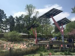 tracy aviary unveils new solar trees kuer 90 1