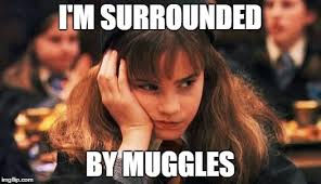 Hermione Memes - 10 adorable memes on hermione granger from the harry potter