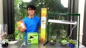 3 convenient grow lights for succulent terrariums youtube