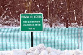 alpine township offers christmas tree recycling well into the
