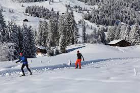cross country skiing col des mosses lake geneva region tourist