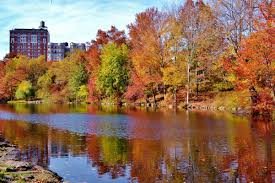 Map Central Park Fun Maps Central Park Conservancy Creates Nyc Fall Foliage Map