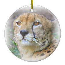 cheetah ornaments keepsake ornaments zazzle