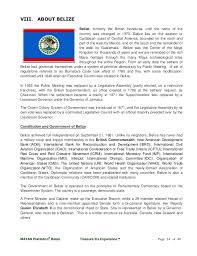 sle resume templates accountant general department belize flag 01 why belize our story and vision mayan plantation belize