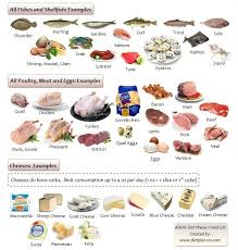 68 best diet plan 101 com images on pinterest paleo diet diet