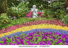 ornamental garden stock images royalty free images vectors