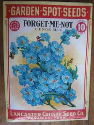 forget me not seed packets 156 best vintage flower seed packets images on vintage