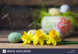 daffodils easter eggs decorative nest with colored eggs in the