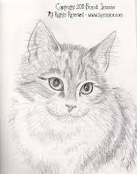 pencil sketches brandi jasmine u0027s emporium