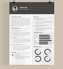 eye catching resume templates opulent eye catching resume templates best 30 free beautiful to