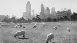 secrets of central park am new york