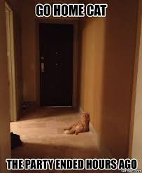 Go Home Meme - meme go home cat viral viral videos