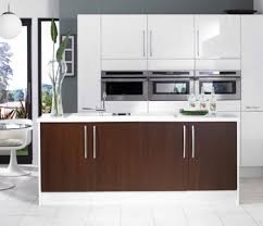 Kitchen Cabinet Door Materials Kitchen Amazing White Gloss Cabinets Home Design Ideas Inside