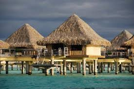 Bungalo by Our Bungalo From The Shark Dive Boat 11 Picture Of