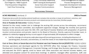 Corporate Development Resume Remarkable Writing A Professional Curriculum Vitae Tags Cv