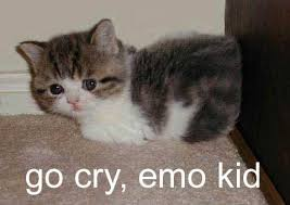 Sad Kitten Meme - go cry emo kid cat macros