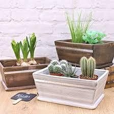 gardening gifts u0026 gardening gift ideas buy from prezzybox com