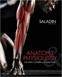 Essentials Of Human Anatomy And Physiology Notes Online Anatomy And Physiology 2 Course With Lab At Best Anatomy Learn