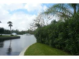 3855 indian river drive e vero beach fl 32963 dale sorensen